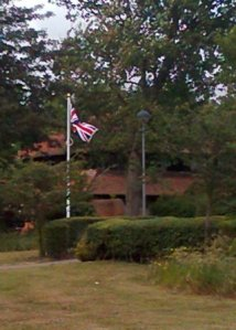 Flag by Babergh